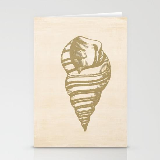 vintage-sea-shell-illustration-cards